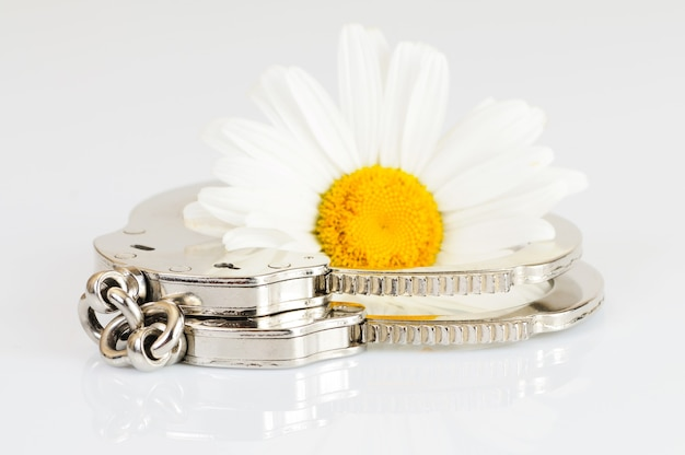 Close-up chrome metal handcuffs turned off lie on a white table next to a camomile. concept of pleasant slavery and conclusion. idea concept. advertising space Premium Photo