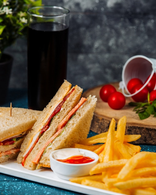 Close up of club sandwich with salami served with fries and sauces Free Photo