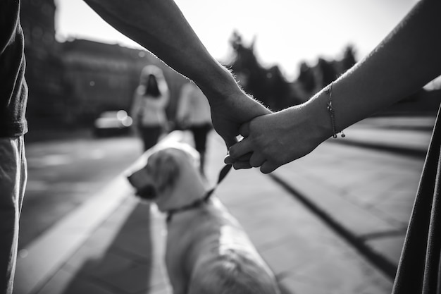 Close-up of couple holding hands in black and white Free Photo