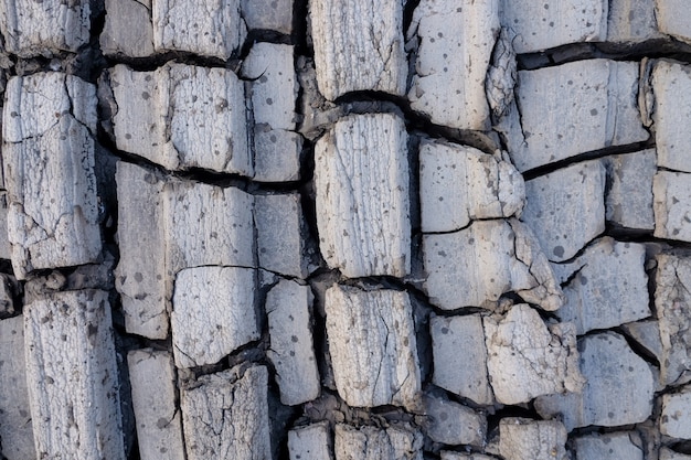 Premium Photo Close Up Of Crack Soil And Muddy In The Dry Season Textures Patterns And Texture Cracked Soil Of Sunny Dried Earth Soil Dried Cracked Earth Soil Ground Background Dry