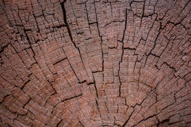 Close up of dark brown wooden  background Premium Photo