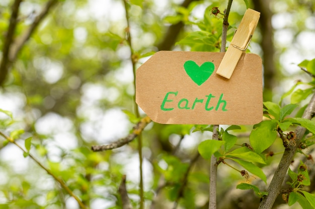 Close-up earth sign in tree Free Photo