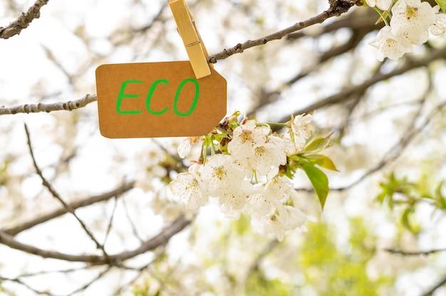 Крупным планом эко знак в дереве Бесплатные Фотографии