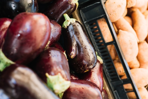 Close-up of eggplants in crate for the sale Free Photo