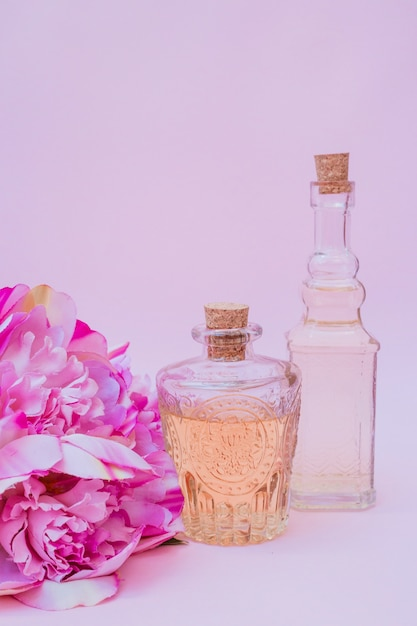 Close-up of essential oil bottles and flowers on purple backdrop Free Photo