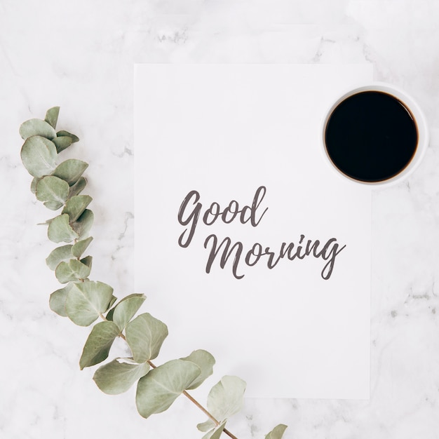 Close-up of eucalyptus branch with good morning text on paper and coffee cup over marble textured background Free Photo
