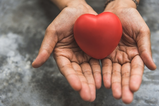 Close up female hands giving red heart as heart donor. valentine day of love concept Premium Photo