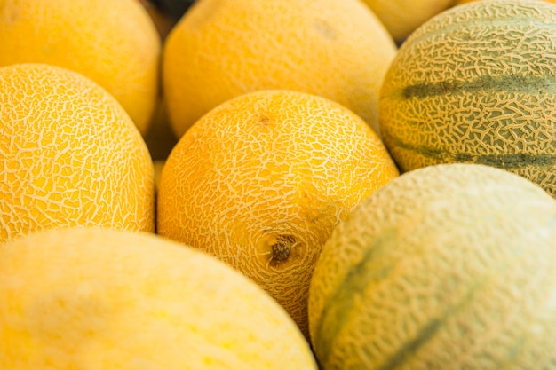 Close-up of fresh cantaloupe and musk melon Premium Photo