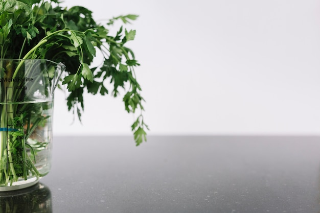 Close-up of fresh parsley in measuring jar on black surface Free Photo
