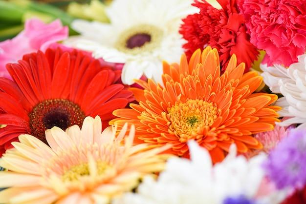 Close up fresh spring flowers bunch plant gerbera chrysanthemum colorful flower background Premium Photo