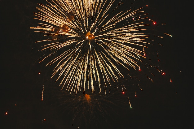 Close-up gold festive fireworks on a black Premium Photo