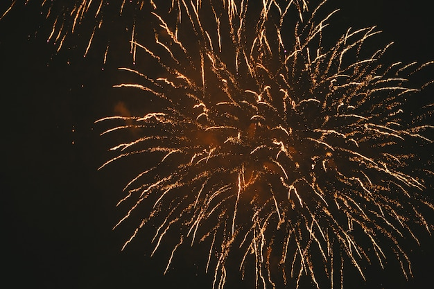 Close-up gold festive fireworks on a black Premium Photo