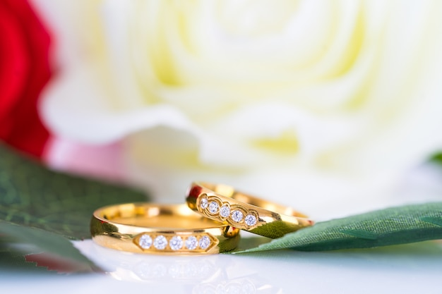 Close up gold ring and red roses on white Premium Photo