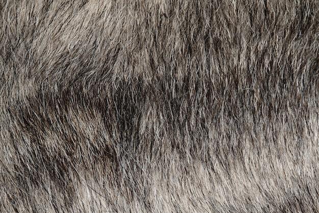 Закройте вверх по серой коже собаки для и предпосылки Premium Фотографии