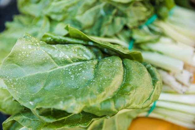 Close-up of green fresh chard leaves for sale Free Photo