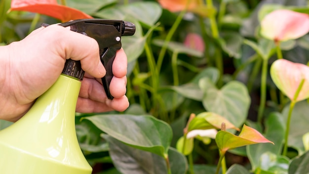 Макро рука держа бутылку спрей для растений Бесплатные Фотографии