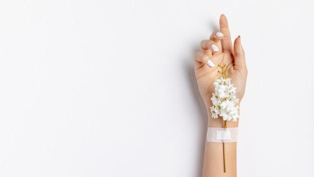 Макро рука с цветком и копией пространства Premium Фотографии