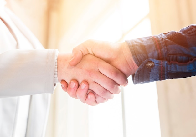 Close-up of handshake of business partners in office Free Photo