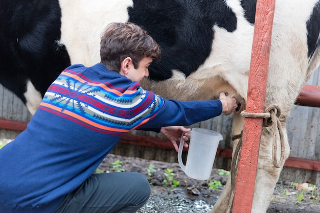 Close-up of happy guy milking a dairy cow Free Photo