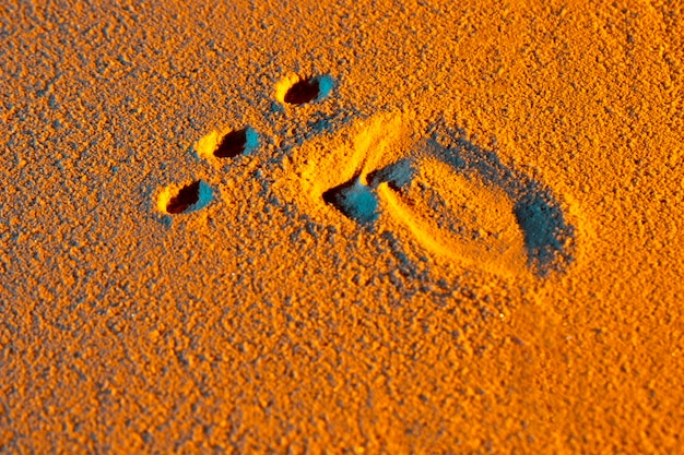 Close-up of human foot shape on sand Free Photo