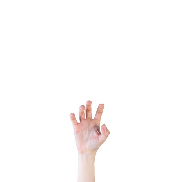 Close-up of a human hand in claw gesture on white background Free Photo