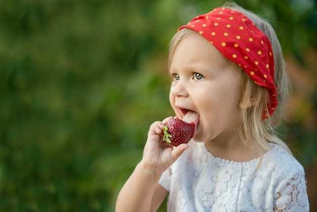 Close up of little girl eating ripe strawberry in nature  child