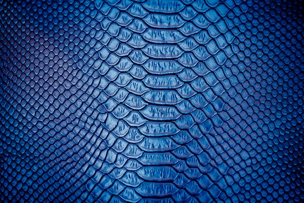 Close up of luxury snake skin texture use for background | Premium Photo