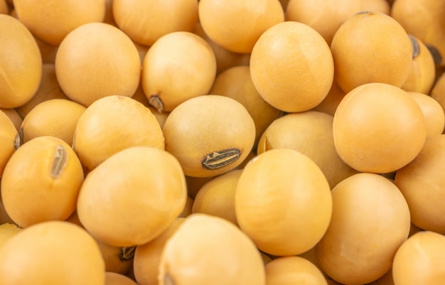 Close up,macro group of soybeans Premium Photo