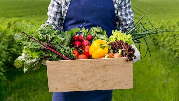Close-up man holding basket with vegetables Free Photo