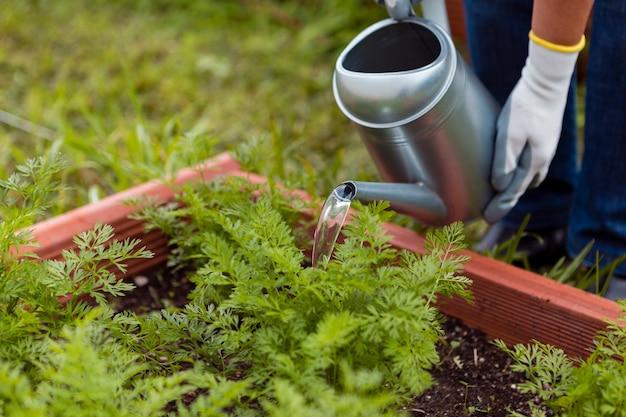 Крупным планом человек поливает растения с помощью спринклера Бесплатные Фотографии