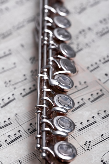 Close up of metal flute Photo | Free Download