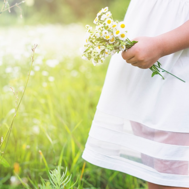 Close up of a girl holding fresh white flowers in the garden photo close up of a girl holding fresh white flowers in the garden free photo mightylinksfo