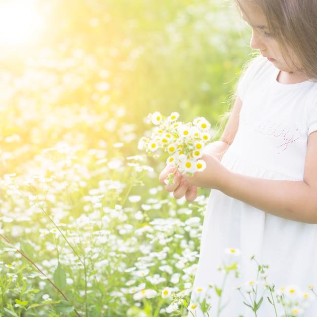 白い花を手にした少女のクローズアップ 無料写真