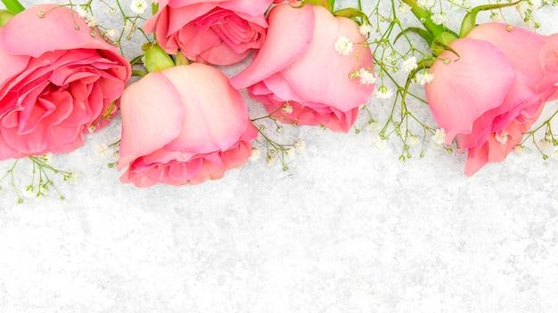 Крупный план красивых розовых роз Premium Фотографии