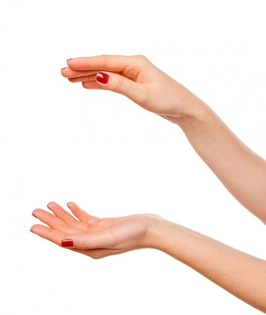美しい女性の手のクローズアップ、手のひら。白で隔離 Premium写真