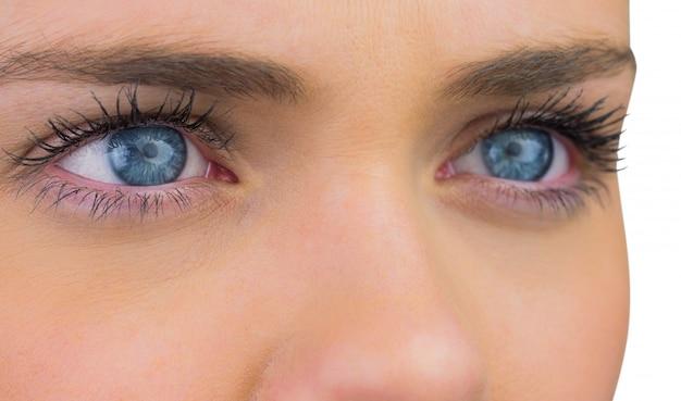 Close up of female blue eyes Premium Photo