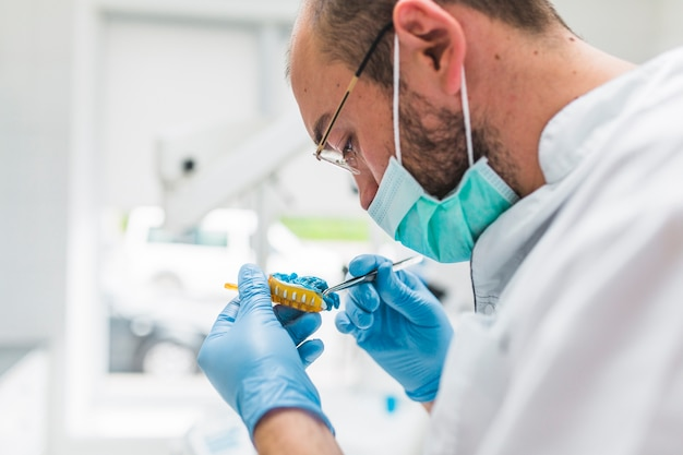 Close-up of male dentist working on dental impression Free Photo