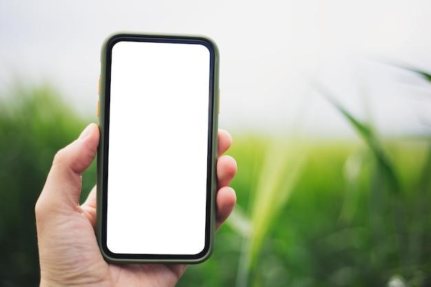 Крупный план мужской руки, держащей смартфон с макетом на открытом воздухе размытым фоном. Premium Фотографии