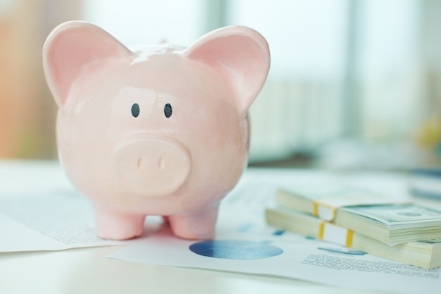 Close-up of piggy bank and banknotes Free Photo