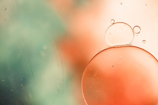 Close-up oily bubbles and droplets in colourful watery backdrop Free Photo