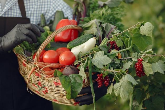Chiuda in su del vecchio contadino che tiene un cesto di verdure. l'uomo è in piedi in giardino. senior in un grembiule nero. Foto Gratuite
