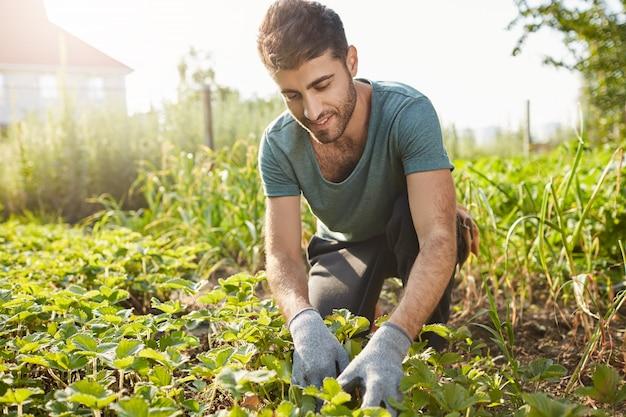 青いtシャツの成熟した魅力的なひげを生やした男性農家の屋外のポートレートをクローズアップ笑顔、農場での作業、緑の芽を計画、野菜を選ぶ 無料写真