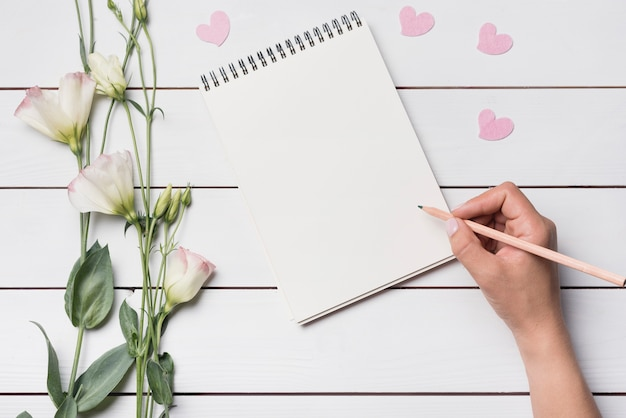 Close-up of a person writing on spiral notepad with pencil Free Photo