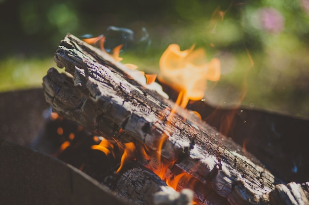 Close-up picture of a firewood with burning flame fire Premium Photo