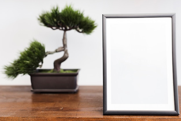 Close-up picture frame with bonsai Free Photo