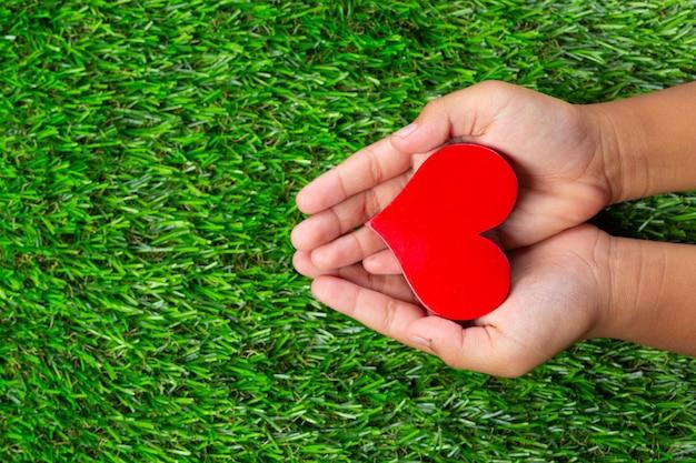 손에 붉은 심장 모양의 사진을 닫습니다 무료 사진