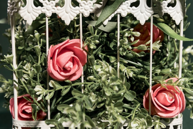 Close up pink roses in cage Free Photo