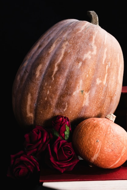 Close-up of pumpkins and roses Free Photo