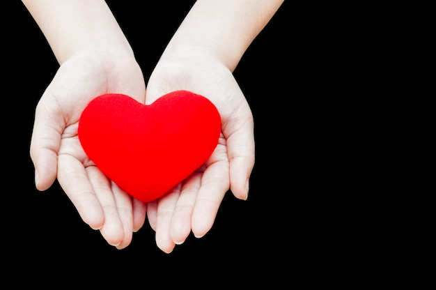 Close up red heart in woman hands, isolated on dark background,health, medicine, people and cardiology concept Premium Photo