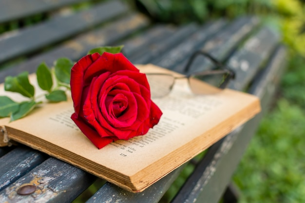 Close-up red rose on top of a book Premium Photo